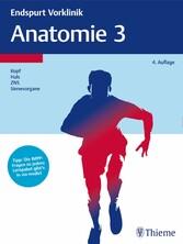 Endspurt Vorklinik: Anatomie 3 - Die Skripten fürs Physikum