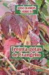 Treinta gotas de Evangelio (Espiritualidad, Band 253)